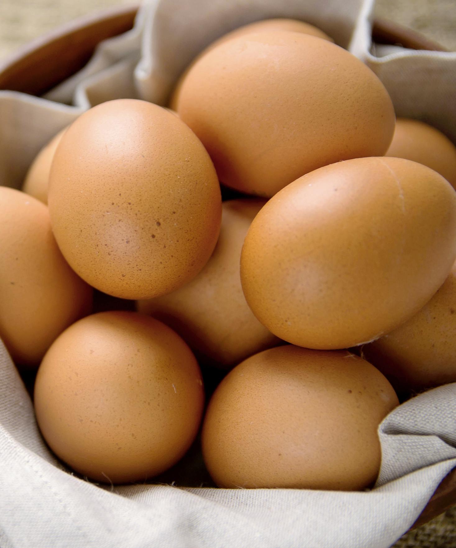 3 infos importantes à savoir sur les œufs