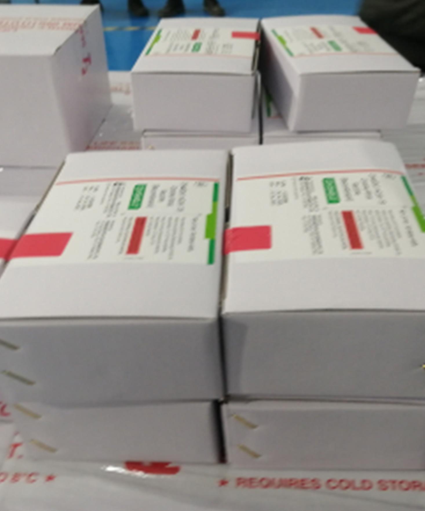 Mobilisation des moyens adéquats pour réussir la campagne de vaccination contre le Covid-19